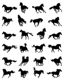Black silhouettes of galloping horses on a white background - 145143018