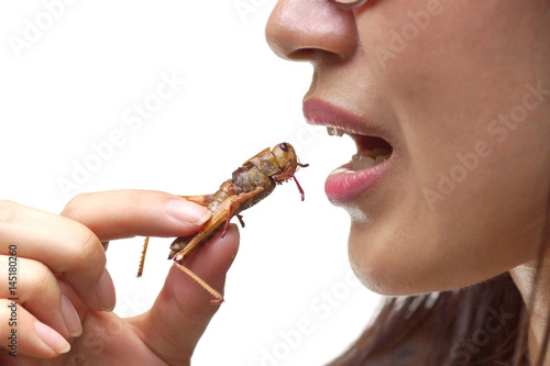 Asian female eating fried locust - Eating insect concept Poster