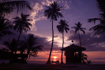 Beautiful coconut beach sunrise with purple sky in Thailand.