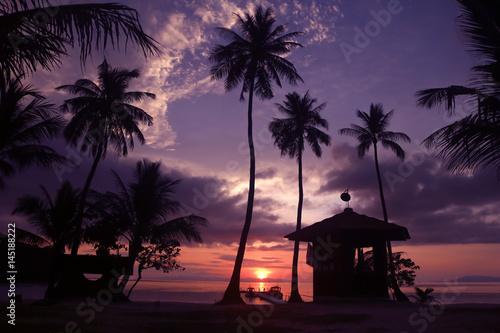 Beautiful coconut beach sunrise with purple sky in Thailand.