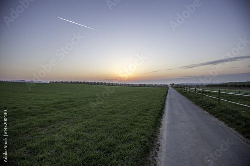 Poster Feldweg in den Sonnenaufgang