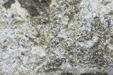 texture mur de pierre