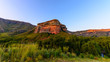 Scenic panoramic South Africa Drakensberge Golden Gate national park landscape - impressive nature with red rock landmark, blue sky,trees,sunset, intense colors ,grass