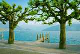 Lake Lucerne, Switzerland. Weggis wooden pier and trees.