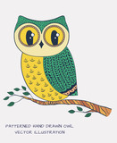 Colorful hand drawn owl. Vector illustration.
