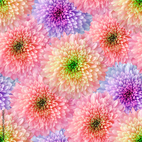 Fotobehang Candy roze Seamless infinite floral background. For design and printing. Background of natural chrysanthemums. Wall-papers.