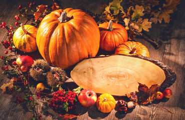 Autumn still life with pumpkins, fruits and berries with copy space