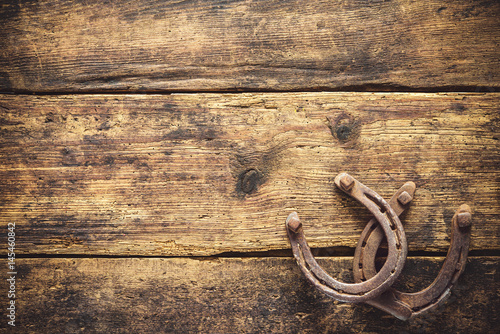Two old rusty horseshoes Poster