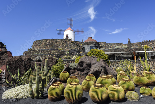 Fotobehang Canarische Eilanden Beautifully designed cactus garden on Lanzarote, Canary Islands
