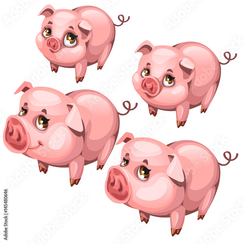 Fotobehang Boerderij Pink cute shy pig in cartoon style. Vector animal