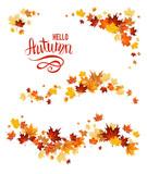 Autumn set of maple leaves - 145492668