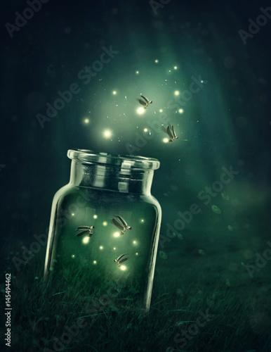 Poster Fireflies leaving the glass
