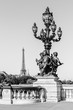 Pont Alexandre III Bridge (Lamp post details) & Eiffel Tower. Paris, France