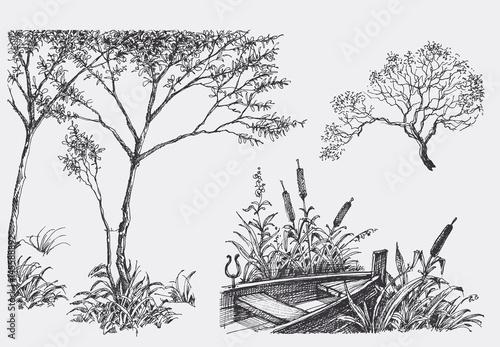 Nature design elements, trees, boat, vegetation drawings
