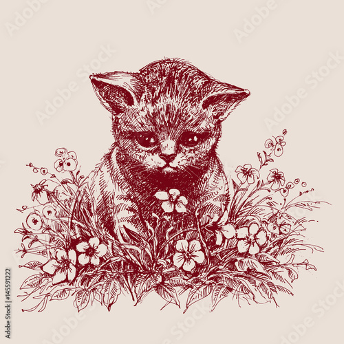 Cat sitting between flowers hand drawing