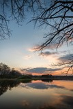 Evening landscape over the pond with trees and branches