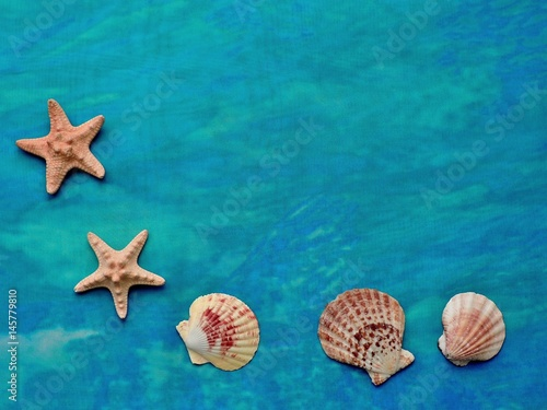 Turquoise textile texture with seashells and starfish