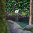 Hamama Falls Swimming Hole
