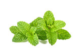 Fresh raw mint leaves isolated on white background - 145861009