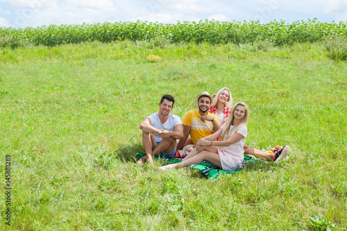Friends picnic people group sitting blanket outdoor green grass two couple summe Poster