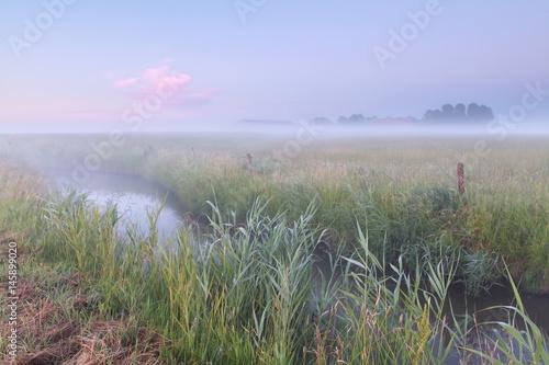 serene morning over farmland - 145899020