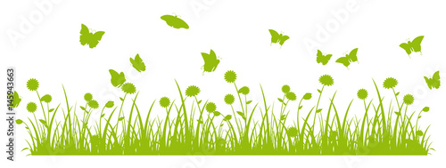 Butterfly meadow banner green silhouette  - 145943663