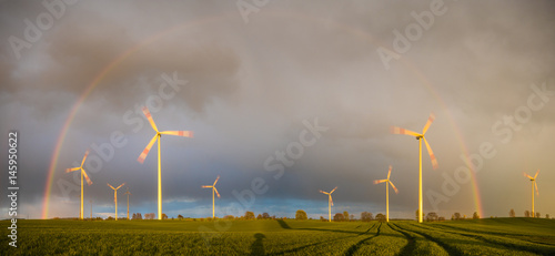 A rainbow over a wind farm on a field of young cereal