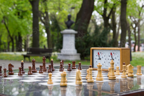 Juliste chess in nature
