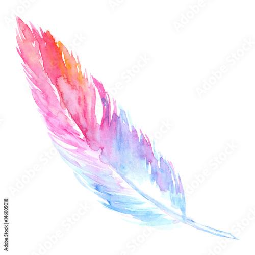 akwareli-rozowy-purpurowy-blekitny-ptasi-nieociosany-piorko-jest