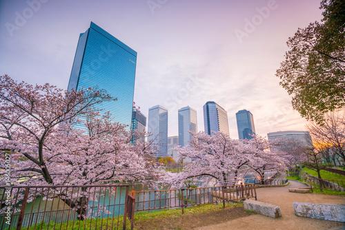 Poster Osaka skyline with full bloom of sakura