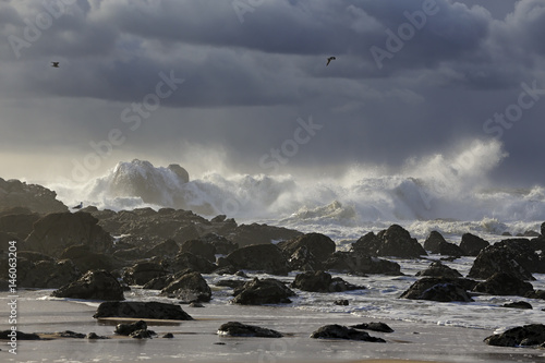 Stormy seascape with beautiful light