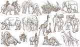 Animals around the World. Big and heavy. An hand drawn full sized pack. Line art. - 146121042