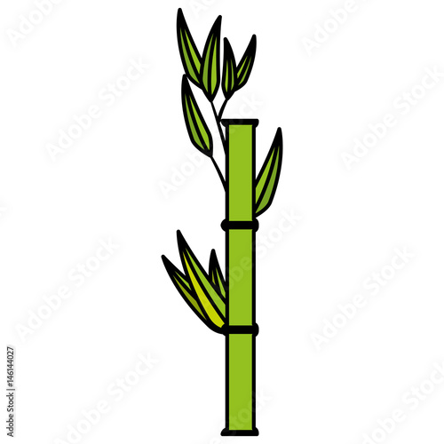 Bamboo japanese tree icon vector illustration graphic design