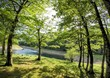 Leurza natural park in Navarra