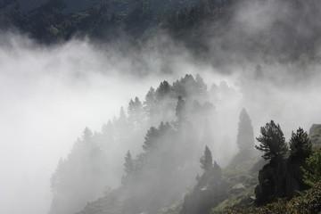 Brouillard dans les Pyrénées ariégeoises, Donezan, Occitanie dans le sud de la France