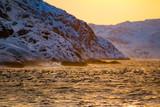 Barents Sea in Arctic Ocean at sunrise