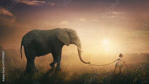 Fototapeta Elephant walked by child