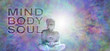 Mind Body Soul Buddha Banner - Buddha in meditative lotus position with white light behind head on a multicolored energy field background and the words MIND BODY SOUL