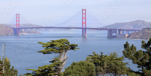 Plexiglas San Francisco Golden Gate Bridge.