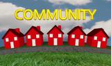 Community Homes Houses Neighborhood Street 3d Illustration - 147354400