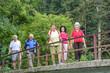 gutgelaunte Senioren-Gruppe überquert beim Wandern eine alte Brücke