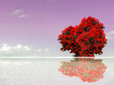 red tree reflection