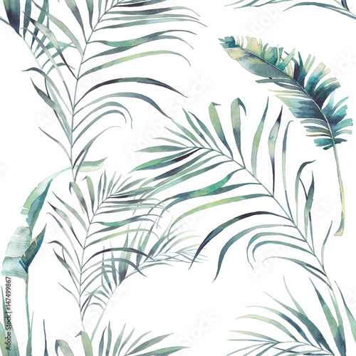 Summer palm tree and banana leaves seamless pattern. Watercolor green branches on white background. Hand drawn exotic wallpaper design - 147499867