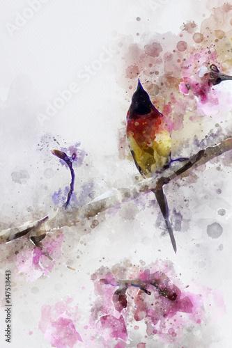 Plakat Abstract Gould's Sunbird on cherry branch
