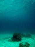 Underwater - 147559474