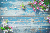 Fototapety Spring blooming branches on blue wooden background.