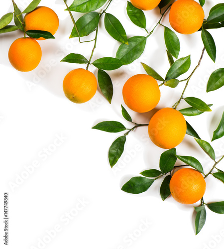 Twigs with oranges.