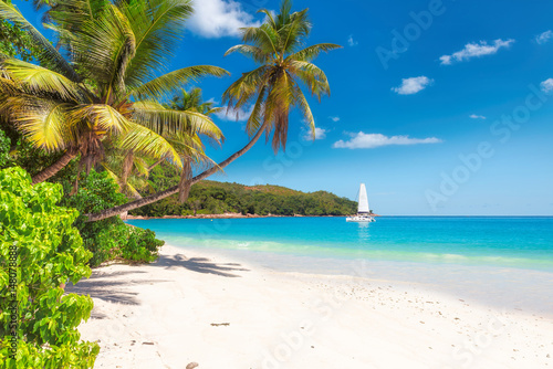 Sandy beach with palm trees and a sailing boat in the turquoise sea on Paradise island. - 148078888