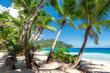 Palm trees on tropical beach.