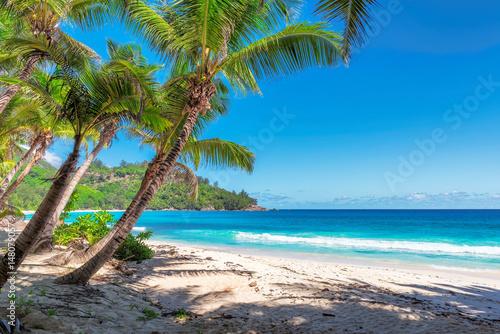 Tropical beach, paradise on Seychelles, island Mahe.